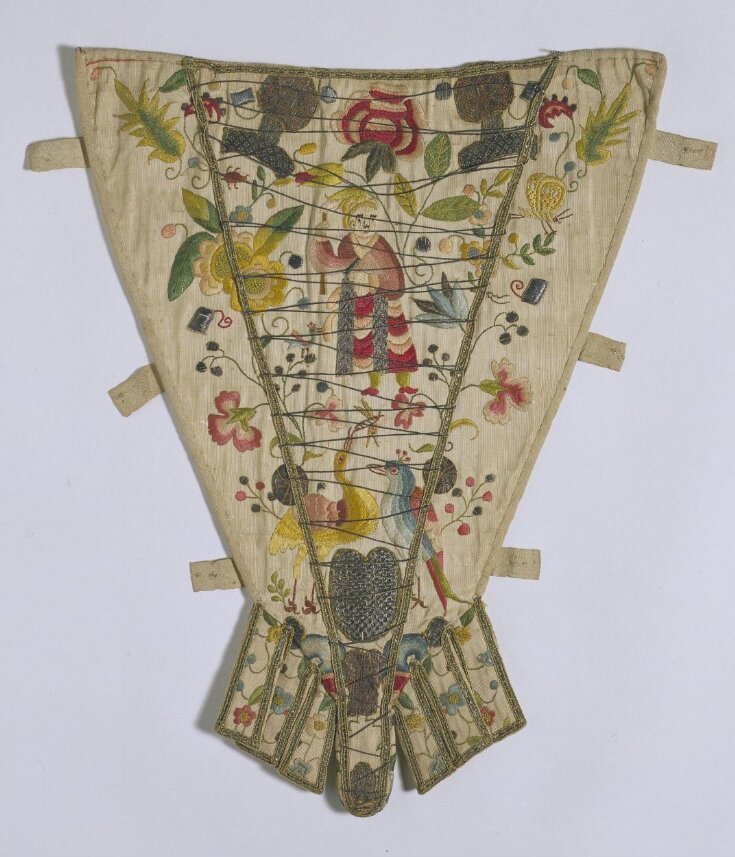 Stomacher top image