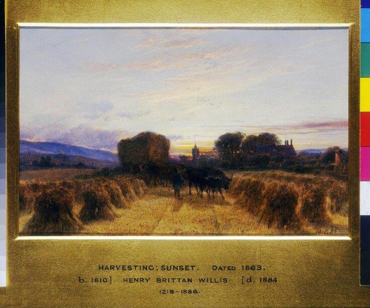 Harvesting : Sunset top image