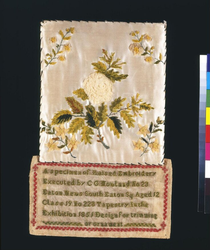 A Specimen of Raised Embroidery top image