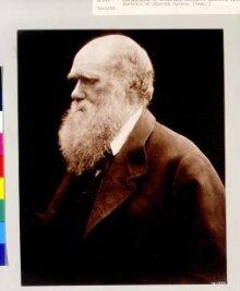 Charles Darwin thumbnail 1