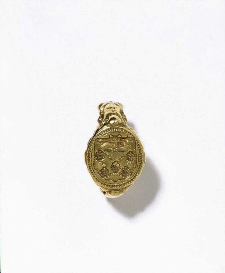 Seal Ring top image