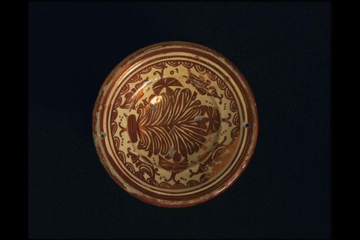 Plate top image