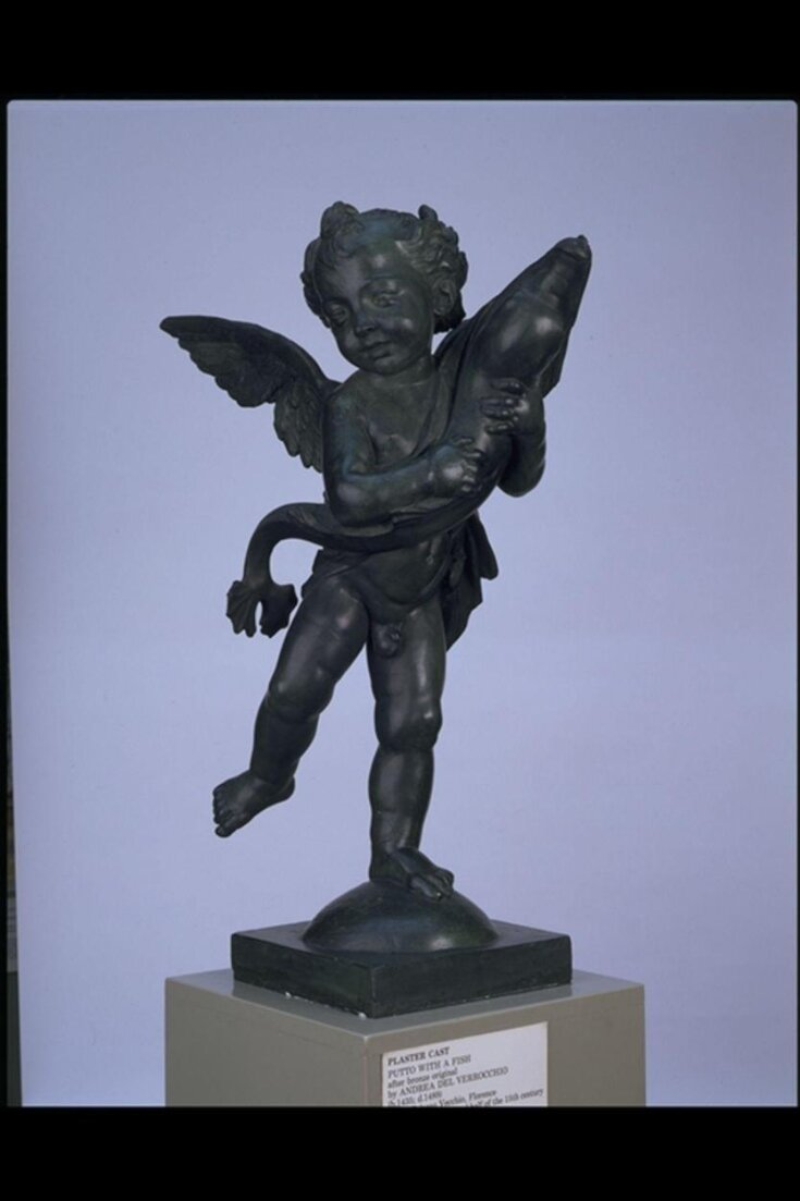 Putto with a Dolphin top image
