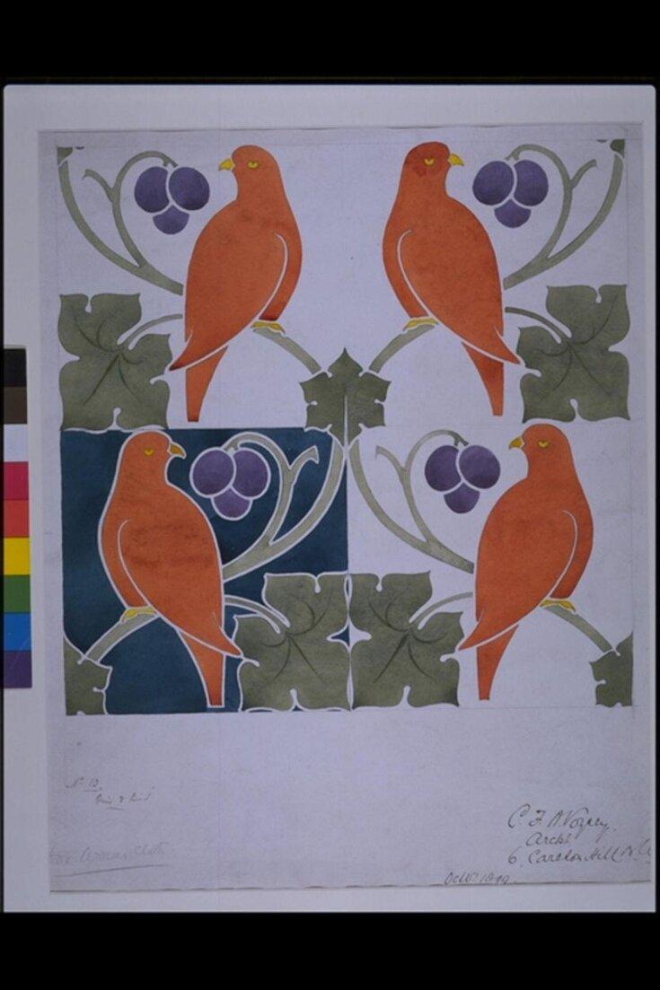 Vine and Bird top image