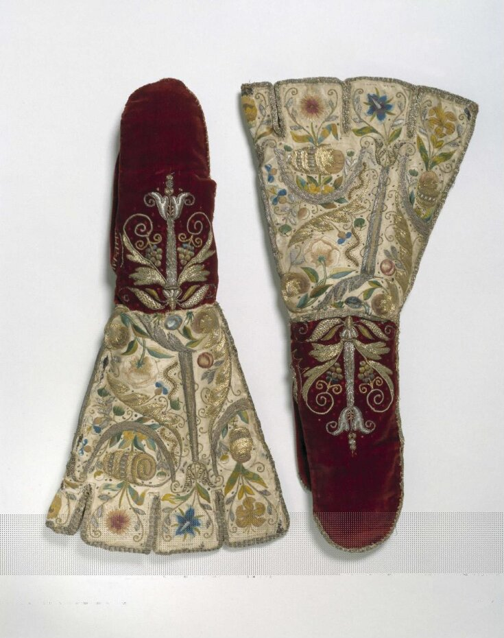 Pair of Mittens top image