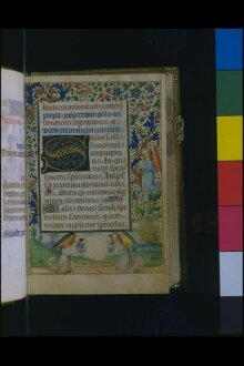 Book of Hours, Use of Rome, known as the 'Salting Hours' or 'Marmion Hours'. thumbnail 1
