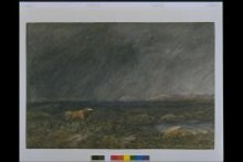 The Challenge: A Bull in a Storm on a Moor thumbnail 1