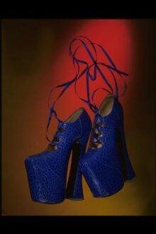Pair of Platform Shoes thumbnail 1