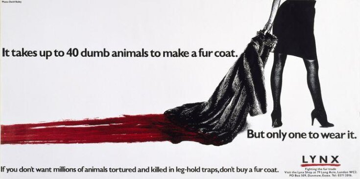It takes up to 40 dumb animals to make a fur coat. top image