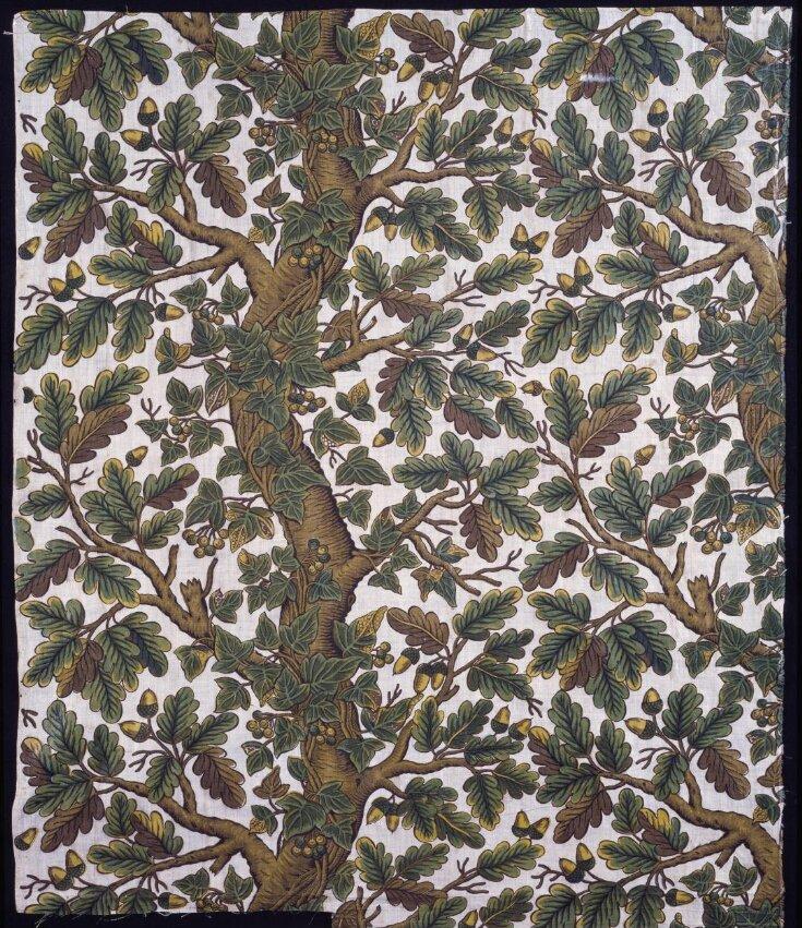 Royal Oak and Ivy top image