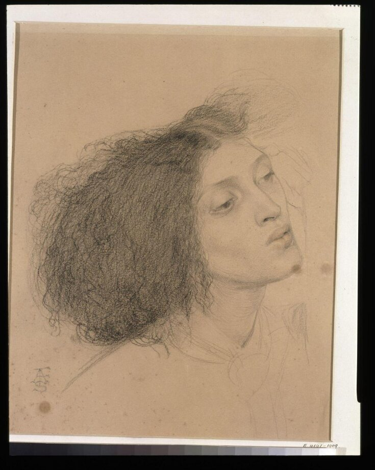 Study for the head of Morgan le Fay  top image