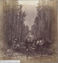 Cutting on the 49th Parallel, on the Right Bank of the Mooyie River Looking West thumbnail 1