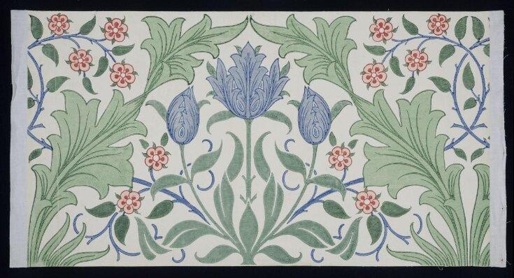 Tulip top image