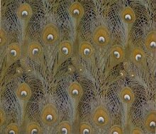 Peacock Feathers thumbnail 1