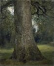 Study of the Trunk of an Elm Tree thumbnail 2