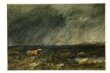 The Challenge: A Bull in a Storm on a Moor thumbnail 2