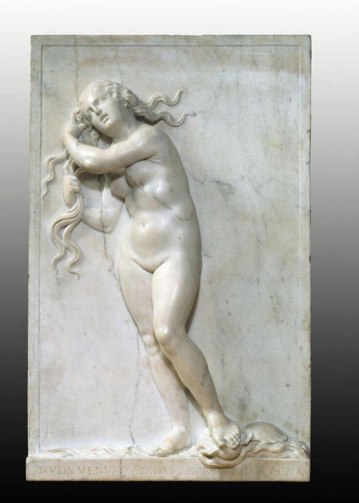 Venus Anadyomene top image