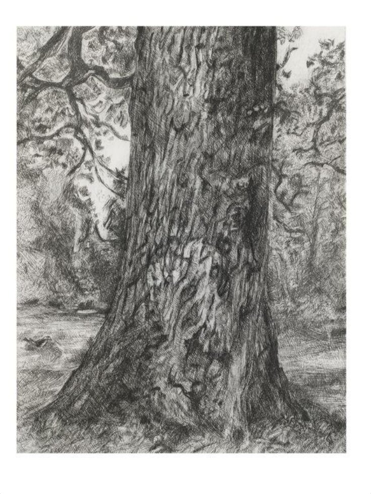 After Constable's Elm top image