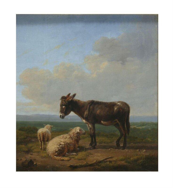 Donkey and sheep top image