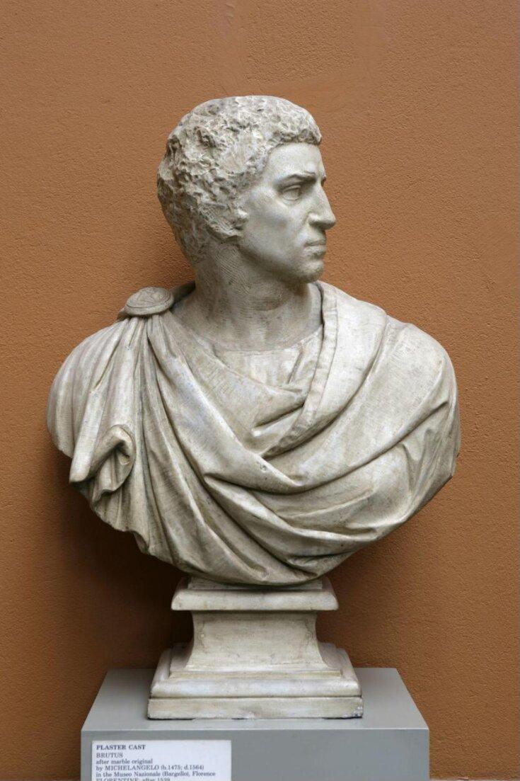 Brutus top image