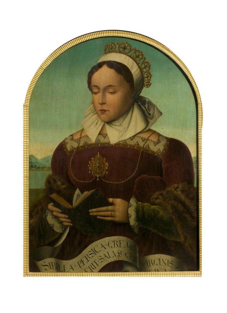 Sibilla Persica top image