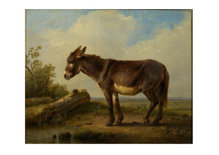 Landscape with donkey top image