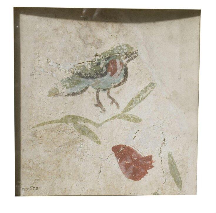 Bird and fruit top image