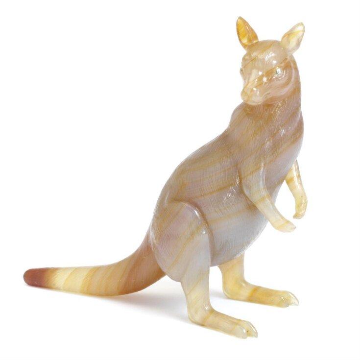 Kangaroo and Case top image