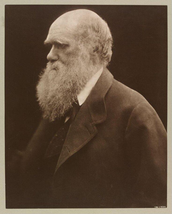 Charles Darwin top image