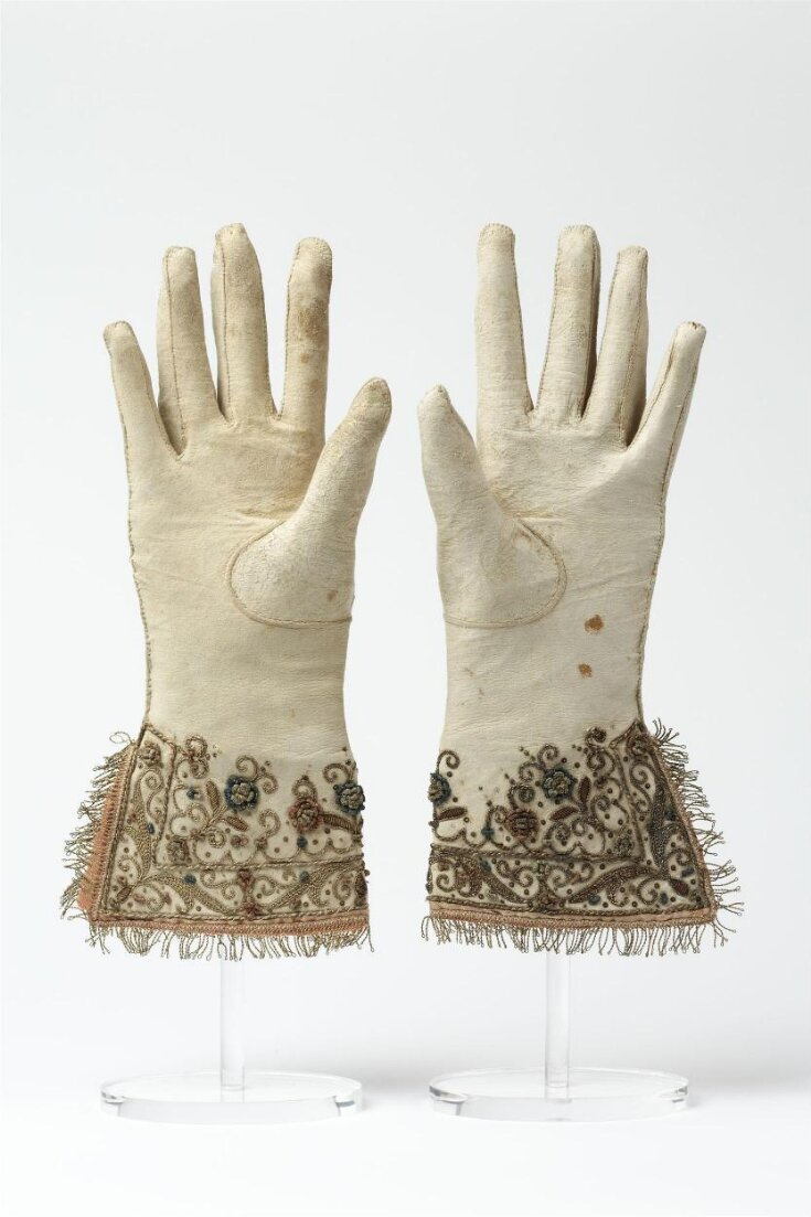 Pair of Gloves top image