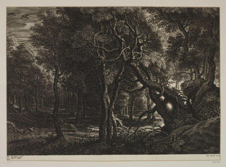 Petits Paysages de Rubens top image