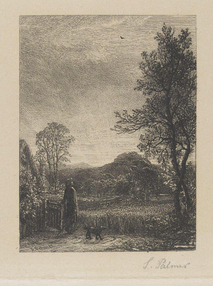 The Skylark top image