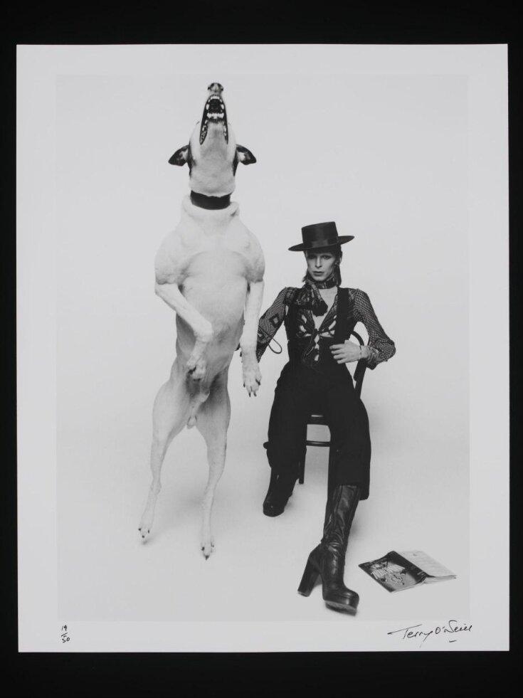 David Bowie top image