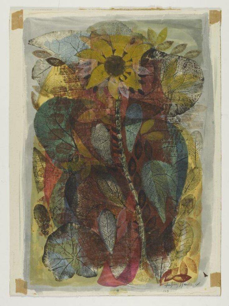 Sunflower top image