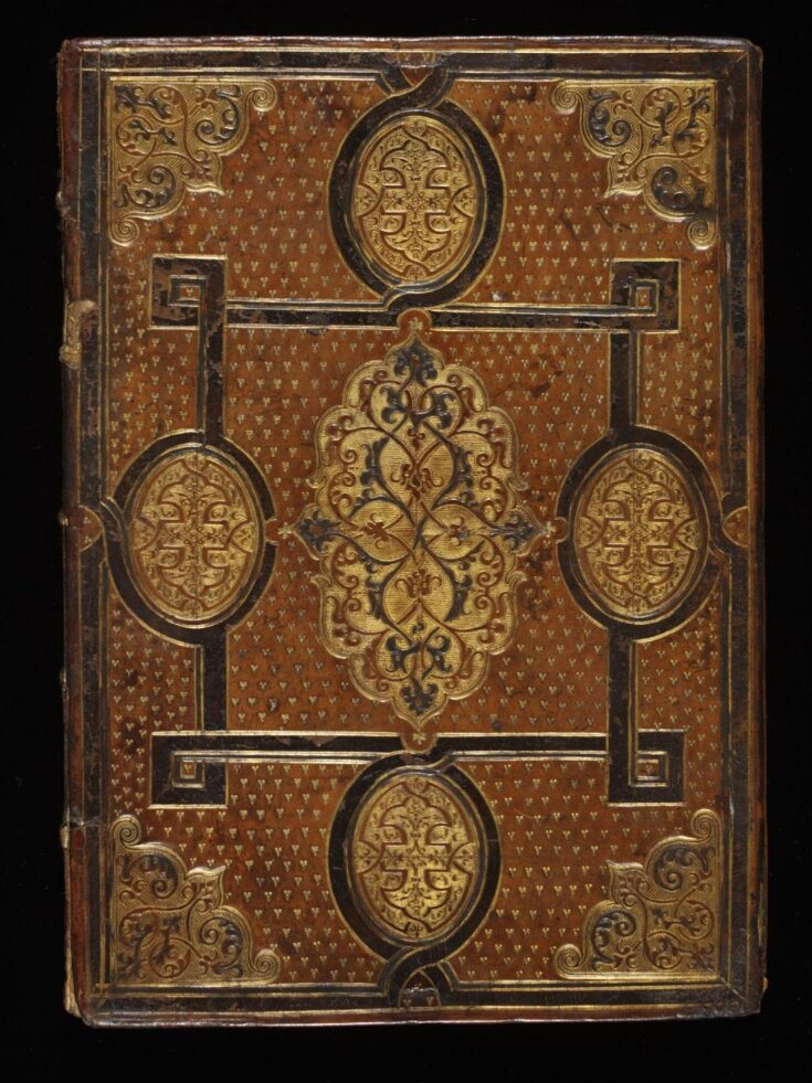 Sketchbook of Jacques Le Moyne de Morgues (watercolours removed)  top image