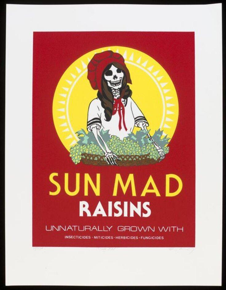 Sun Mad Raisins top image