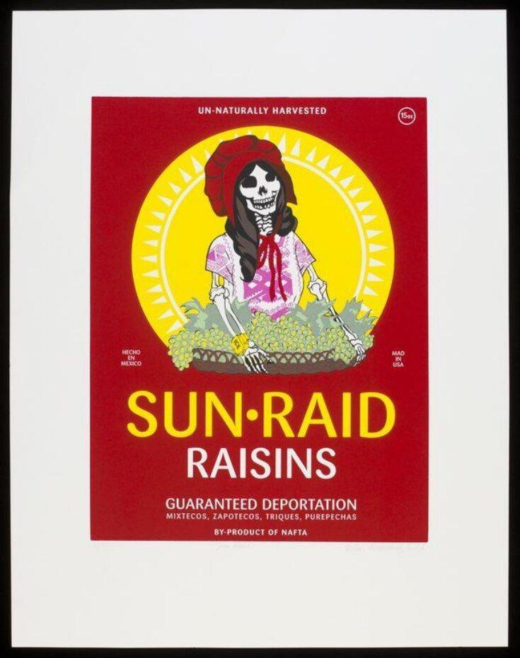 Sun Raid Raisins top image