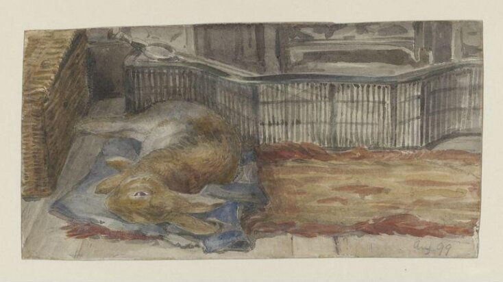 Peter Piper lying on his blue quilt by the fire top image