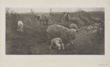 A March Pastoral thumbnail 1