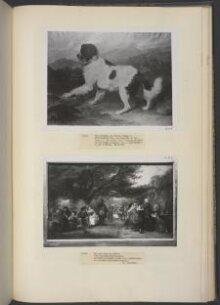Lion: A Newfoundland Dog thumbnail 1