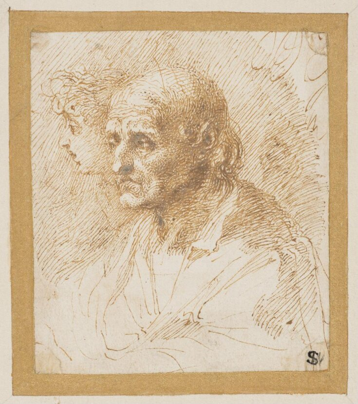 Study of the head of an old man  top image