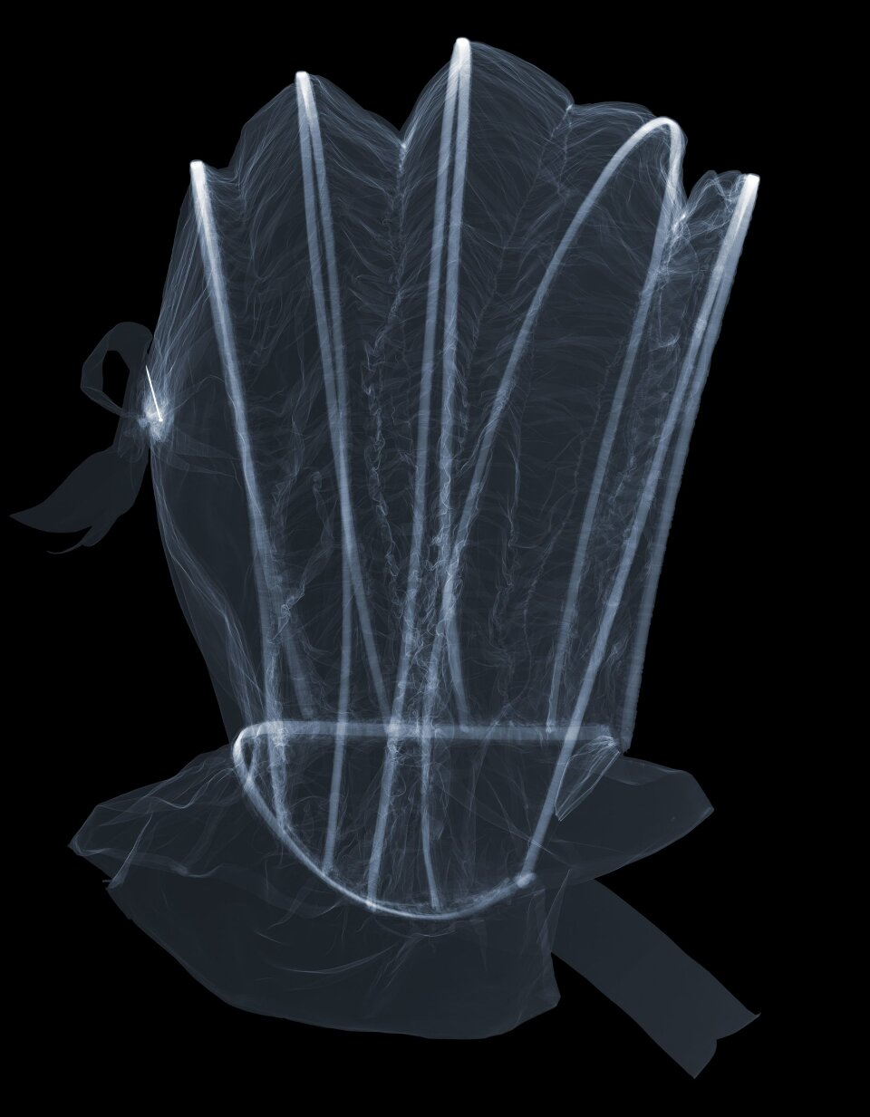 X-ray of calash. Photography by Nick Veasey, 2017