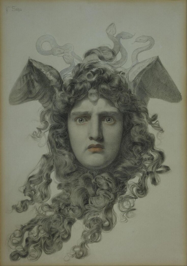 Medusa top image
