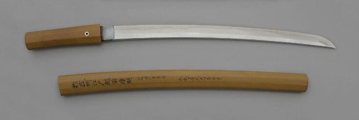 Companion Sword and Scabbard top image