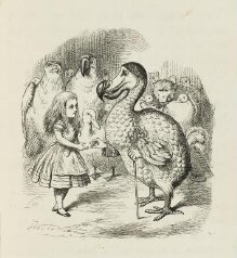 Alice's adventures in wonderland thumbnail 1