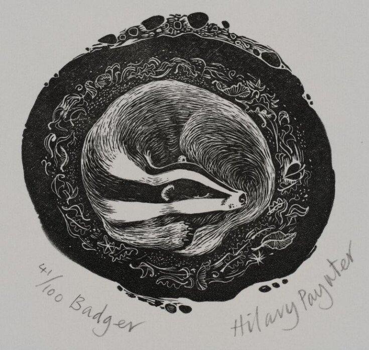 Badger top image