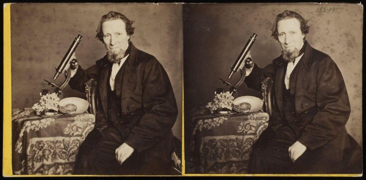 Stereograph portrait of a man with microscope, coral and seashells top image