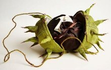 Horse Chestnut bag with Conker purse thumbnail 1