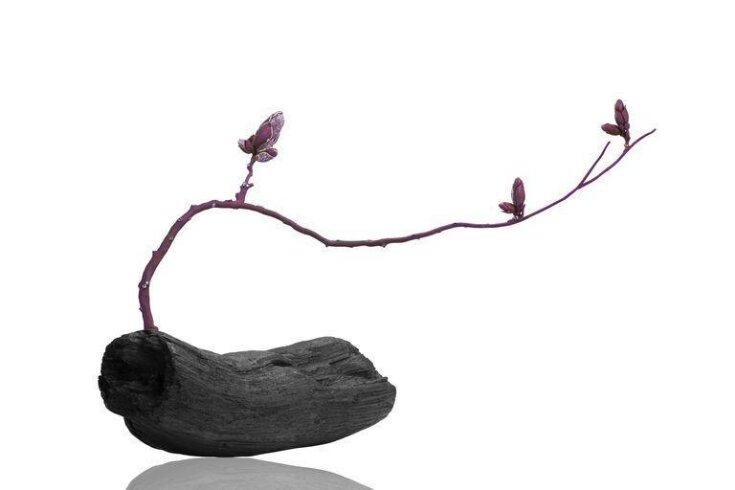Zen top image